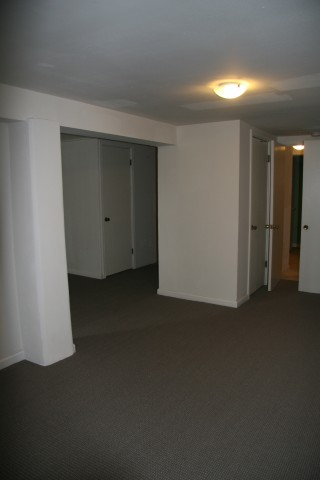 One Bedroom Apartment, updated, perfect for Wash U Students