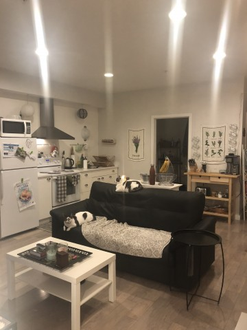 One Room Sublet- Females Only Please!