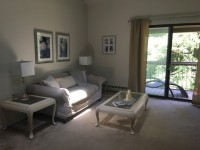 Spacious 1BR/1BR apt for July and September