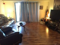Room For Rent Lombard Condo Private Bath - (Lombard: North Ave & Swift Rd)