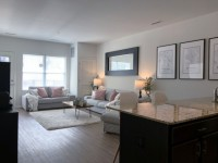6 Month Sublet - November is Free