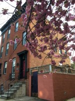 Beautiful Butchers Hill Townhouse- Sublet private room and bathroom April 1-June 30