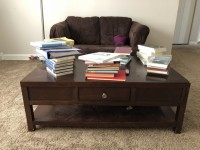 Loveseat (with pull-out twin bed) and coffee table