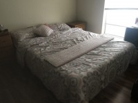 A set of comforter with two standard pillows(Moving out sales)