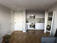 Harvard Sq - Spacious, renovated 1BR apartment