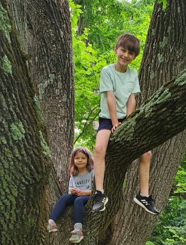 Part-time Afterschool babysitter/nanny for 2 kids in Lincoln, MA