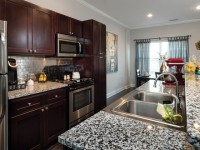 Spacious Summer Sublease at the Gainesville Ridge