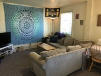 Private Room Spring/Summer Sublease