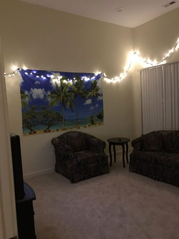 1 Bedroom available to sublease Summer 2019