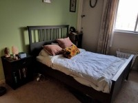 $650 / month Summer Sublet near Central Campus